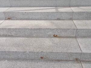 Sanierungsbedürftige Treppe